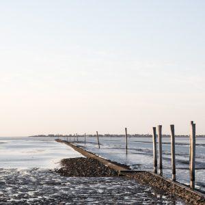 Gulfhof Dreybült - exklusive Ferienwohnungen - Familienurlaub Ostfriesland