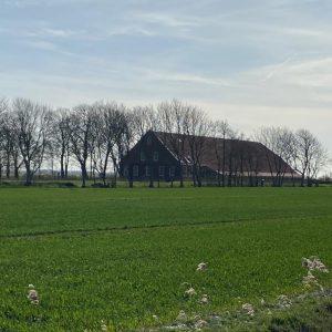 Ferienhaus für Familientreffen - Gruppenunterkunft Nordsee - Gulfhof Dreybült